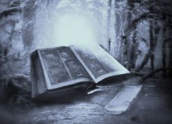 fantasybooks_001